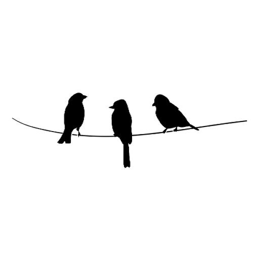 Semi Permanent Birds Feather Tattoos Inkbox