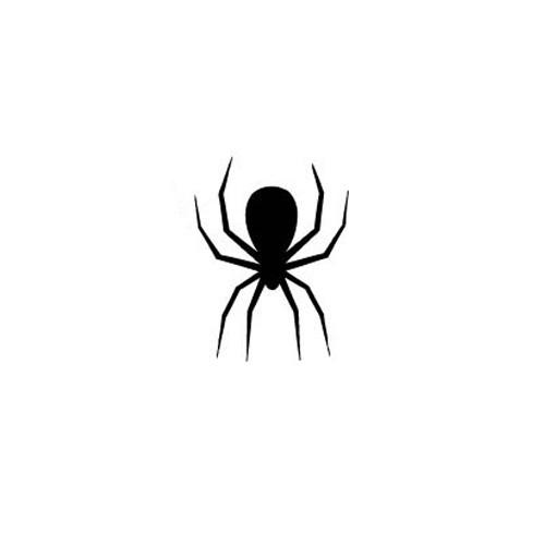 Araneae by Wotto is a Animals tattoo from inkbox - 3