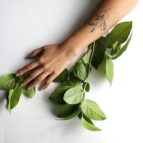 Latifolia by Xixi Wang is a Flowers temporary tattoo from inkbox - 0