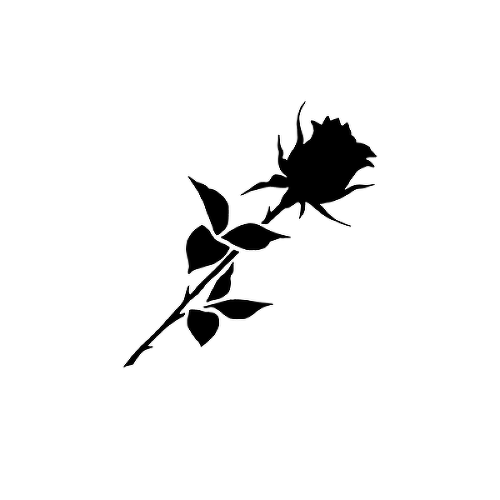 Noir by Lenera Solntseva is a Flowers temporary tattoo from inkbox - 1