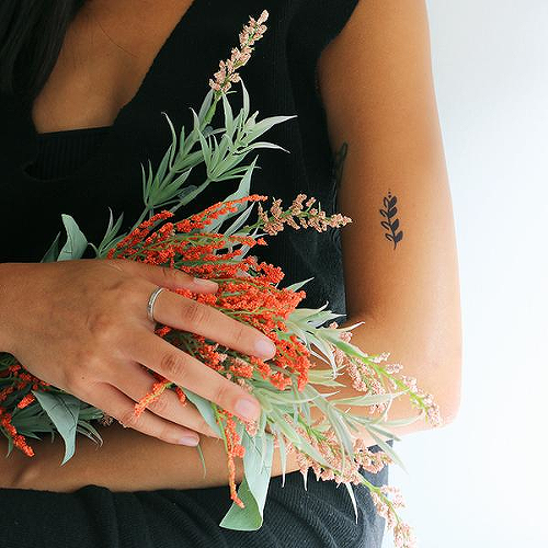 Vera by Talia Missaghi is a Nature temporary tattoo from inkbox - 0