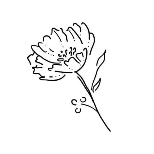 Yarrow by inkbox is a Flowers temporary tattoo from inkbox - 3